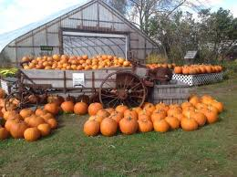 Pumpkin Patch Near Pensacola Fl by 138 Best Rural New England Images On Pinterest Travel Usa East