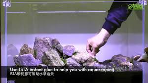 Aquascaping Set-up - YouTube How To Set Up An African Cichlid Tank Step By Guide Youtube Aquascaping The Art Of The Planted Aquarium 2013 Nano Pt1 Best 25 Ideas On Pinterest Httpwwwrebellcomimagesaquascaping 430 Best Freshwater Aqua Scape Images Aquascape Equipment Setup Ideas Cool Up 17 About Fish Process 4ft Cave Ridgeline Aquascape A Planted Tank Hidden Forest New Directly After Setting When Dreams Come True