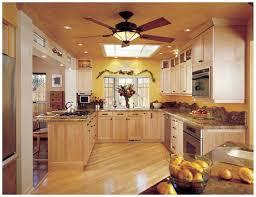 bright light kitchen ceiling fan pranksenders