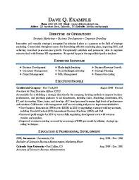 23 Director Of Operations Job Description Samples Ideal Resume Example