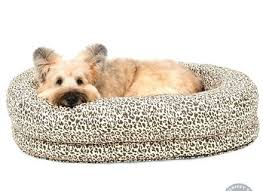 jax and bones bloom dog cat beds confetti ebay dog beds and costumes