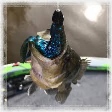 Fishusa Promo Code: Oil Change Coupons Conroe Tx