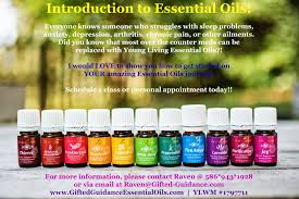 6th Edition Essential Oils Desk Reference Online by Gifted Guidance Essential Oils