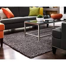 Chenille Carpet by Silky Shag Area Rug Anji Mountain Target