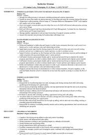 Inside Sales Executive Resume Samples | Velvet Jobs Marketing Resume Format Executive Sample Examples Retail Australia Unique Photography Account Writing Tips Companion Accounting Manager Free 12 8 Professional Senior Samples Sales Loaded With Accomplishments Account Executive Resume Samples Erhasamayolvercom Thrive Rumes 2019 Templates You Can Download Quickly Novorsum Accounts Visualcv By Real People Google 10 Paycheck Stubs