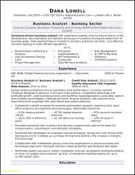 Resume Templates Systems Analyst Sample Download Business Template