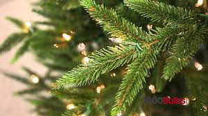 Realistic Artificial Christmas Trees Canada by Pvc Vs Pe Christmas Trees Youtube
