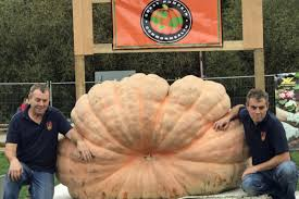 Heaviest Pumpkin Ever by Gardening Paton Brothers Smashing Records With Their Pumpkins
