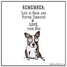 Remember Life Is Good And Youre Terrific Love Your Dog U003c3 Dog