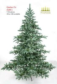 10ft Christmas Tree Artificial by 100 Trees Types Mail Order Vermont Christmas Trees Learn