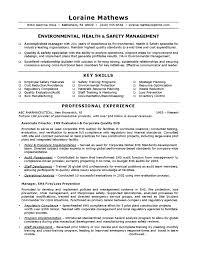 Environmental Health Safety Sample Resume Manager Job