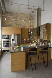 Galley Kitchen Track Lighting Ideas by Best Galley Kitchen Designs Others Beautiful Home Design