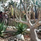 Matthaei Botanical Gardens 248 s & 54 Reviews Botanical