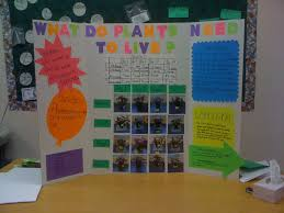 Journeys Grade 3 Science Fair