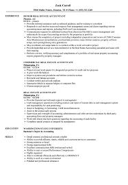 Download Real Estate Accountant Resume Sample As Image File