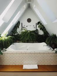 so verwandeln sie ihr zuhause in einen indoor dschungel