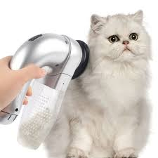 Excessive Hair Shedding In Cats by Best 25 Remove Cat Hair Ideas On Pinterest Flawless Makeup