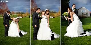 cat wedding dress bellingham wedding photography volkel image