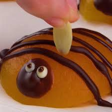 aprikosen kuchen mit puddingcreme so lecker und niedlich