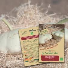 cuisiner le patisson blanc patisson blanc bio la semence bio