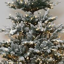 Snowy Dunhill Christmas Trees by Catchy Collections Of Snowy Pre Lit Christmas Tree Fabulous