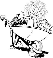 wheelbarrow of the gardener with plants
