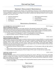 Real Estate Resume Sample Agent Example Realtor Resumes