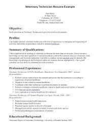 Veterinarian Resume Template Veterinary