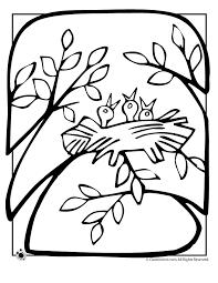 Pin Birds Nest Clipart Colouring 1