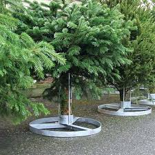 Heavy Duty Christmas Tree Stand Commercial Stands Menards