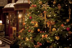 Types Christmas Trees Most Fragrant by Christmas Decorations 2015 You U0027ve Been Trimming Your Tree All