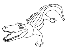 Pin Drawn Alligator Colouring Page 10