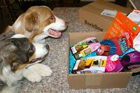 Lil'Tykes&TheTaillessTornados: BarkBox February Review + ... Bark Box Coupons Arc Village Thrift Store Barkbox Ebarkshop Groupon 2014 Related Keywords Suggestions The Newly Leaked Secrets To Coupon Uncovered Barkbox That Touch Of Pit Shop Big Dees Tack Coupon Codes Coupons Mma Warehouse Barkbox Promo Codes Podcast 1 Online Sales For November 2019 Supersized 90s Throwback Electronic Dog Toy Bundle Cyber Monday Deal First Box For 5 Msa