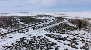 Colorado Blm Christmas Tree Permits by The Battle Over Bunkerville The Bundys The Federal Government
