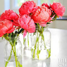 5 Ways to Make Your Peonies Last Forever