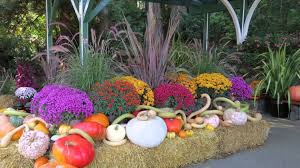 Travel to Butchart Gardens in the Fall