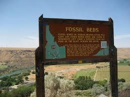 hagerman fossil beds national monument the free
