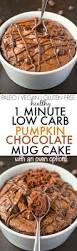 Healthy Chocolate Pumpkin Desserts by Healthy 1 Minute Low Carb Pumpkin Chocolate Mug Cake