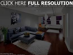 Cute Living Room Ideas On A Budget by Marvellous Cute Living Room Ideas U2013 Beautiful Living Rooms Photo