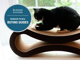 Kh Thermo Kitty Heated Cat Bed by The Best Cat Beds You Can Buy Business Insider