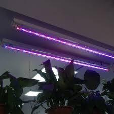 best 25 grow light bulbs ideas on grow lights for