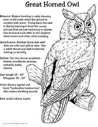 Great Horned Owl Color Page Animal Coloring Pages For Kids Thousands Of Free Printable