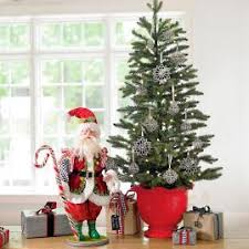Potted Christmas Trees For Sale by White Iced Fir Tree Grandin Road