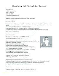 Automotive Technician Resume Objective Sample Objectives For Maintenance Mechanic Template S Nail With Entry Level