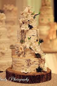 Rustic Birch Cake Ideas