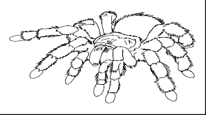 Spiderman Coloring Pages Lego Games 3 Printables Spider Man Kids