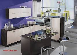 cuisine domactis cuisine tendance free peinture de cuisine tendance couleur de