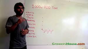 best hps bulb comparison test hortilux ushio digilux lumatek