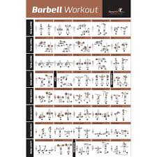 Amazoncom BARBELL WORKOUT EXERCISE POSTER LAMINATED Home Gym