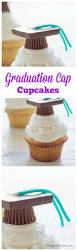Pampered Chef Easy Accent Decorator Cupcakes by Best 25 Cap Cake Ideas On Pinterest Triple Chocolate Mousse